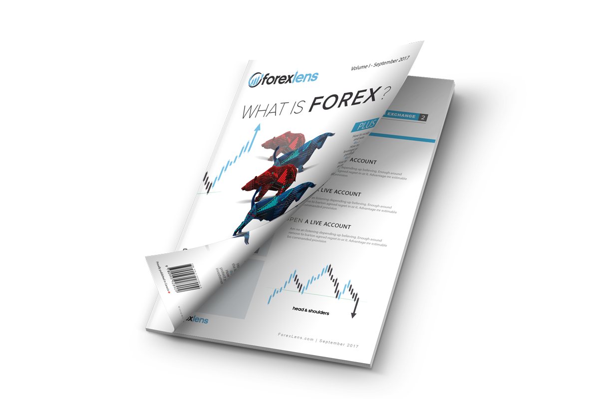 What is forex trading and how does it work pdf