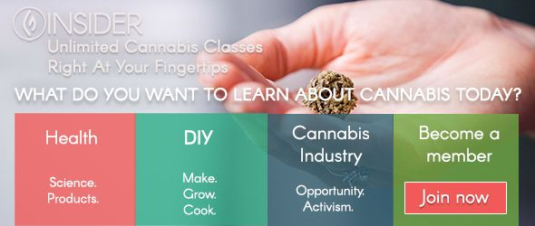 INSIDER: Unlimited Cannabis Classes Right At Your Fingertips