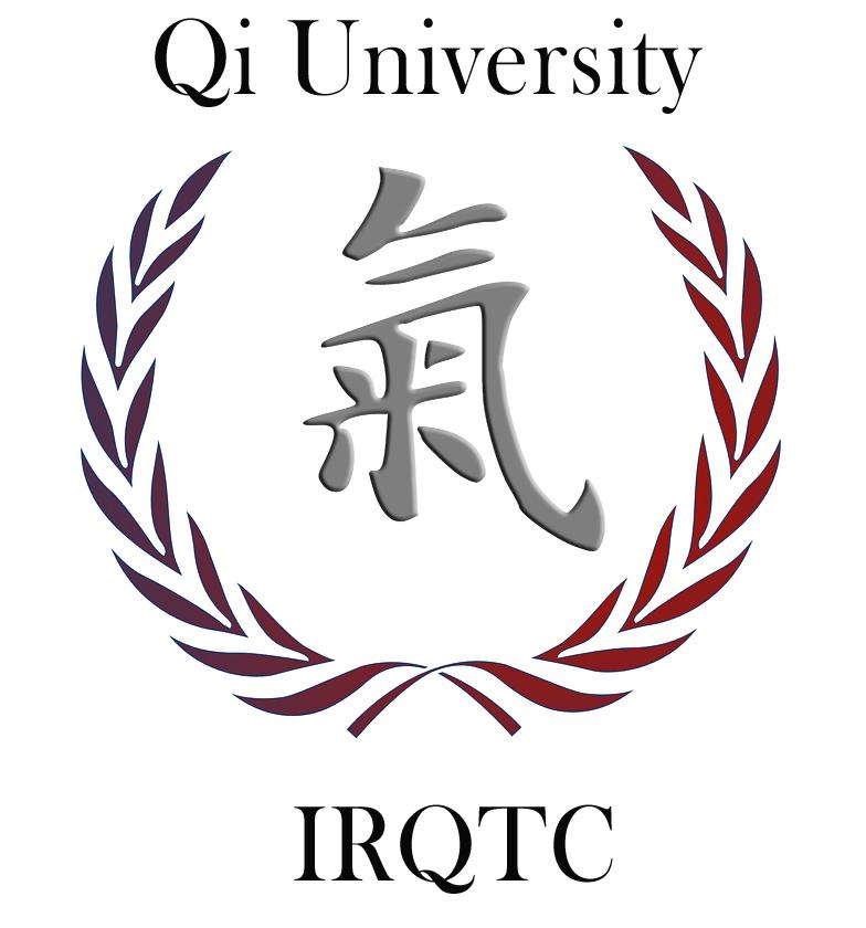 Fundamentals Of Rehabilitative Qigong Tai Chi For Tai Chi Teachers